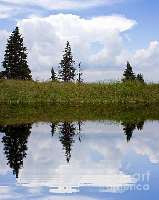 Reflection Of Lake Print by Odon Czintos
