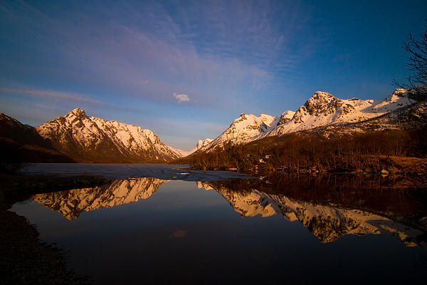 Frank Olsen - Reflections in May