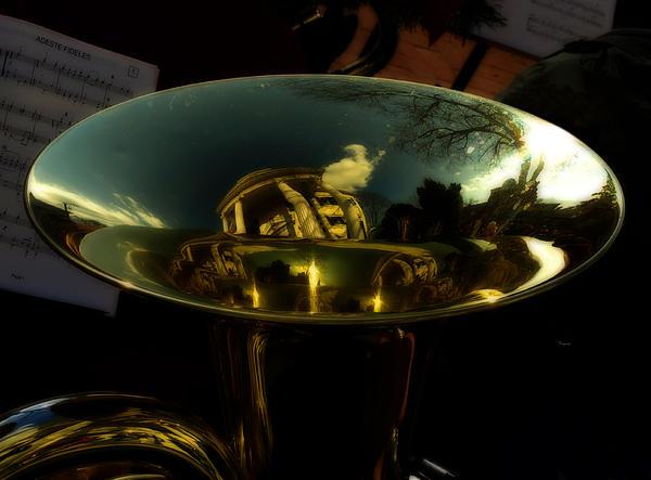 Reflections In Tuba Art   Print by Steven  Digman