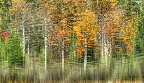 Dawn J Benko - Reflections of Hemlock Pond