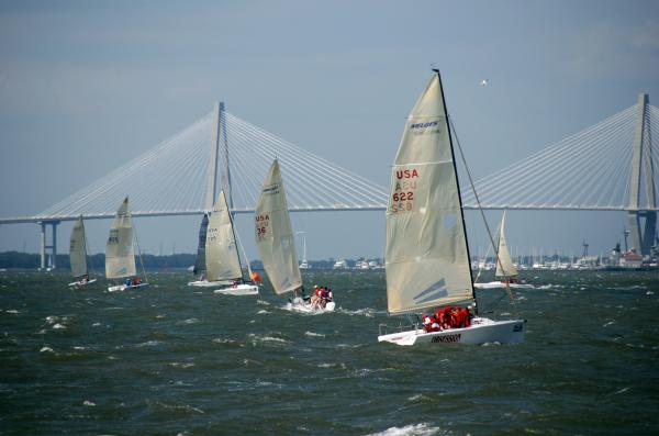 Regatta In Charleston Harbor Print by Susanne Van Hulst