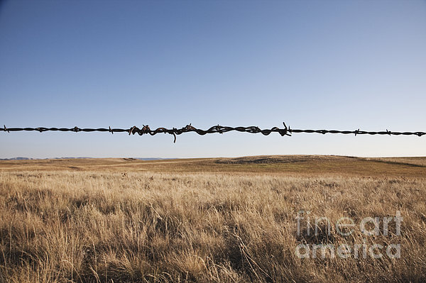 Repaired Strand Of Barbed Wire Print by Jetta Productions, Inc