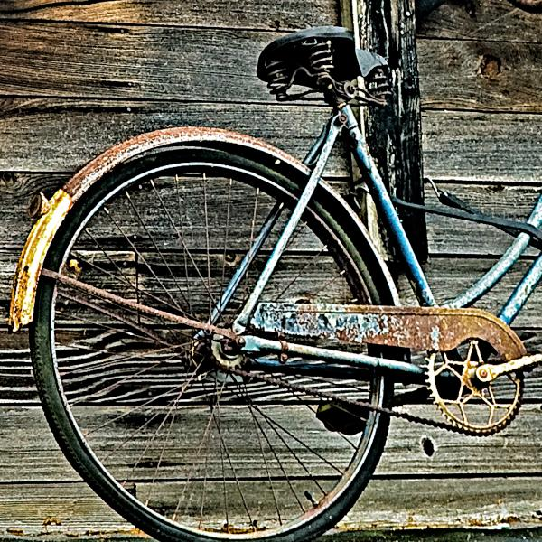Retired Ride Print by Marion McCristall