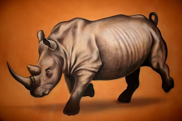Wahid  Benlabhili  - Rhino