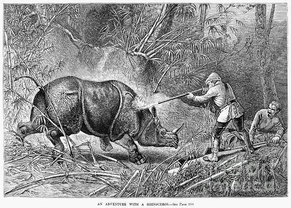 Rhinoceros Hunt, 1889 Print by Granger