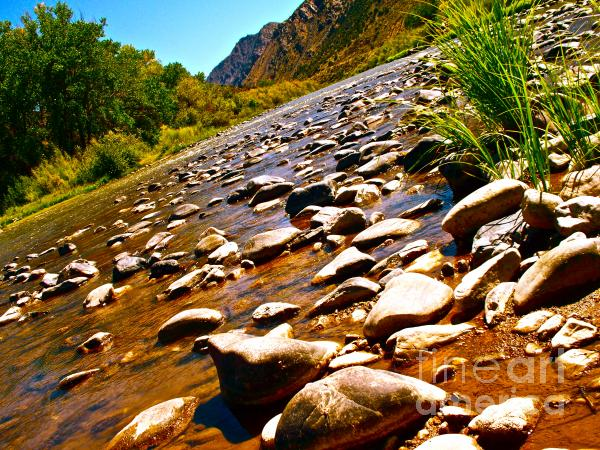 Rio Grande Above Santa Fe Print by Chuck Taylor
