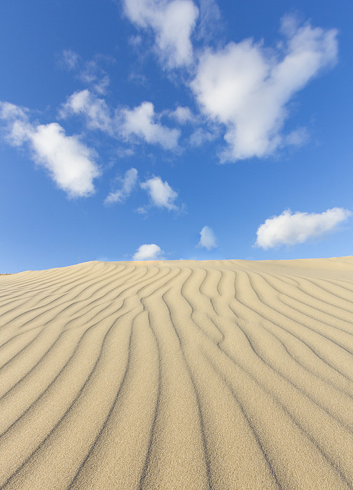 Rippled Sand Dune And Blue Sky With Clouds Print by Rob Kints