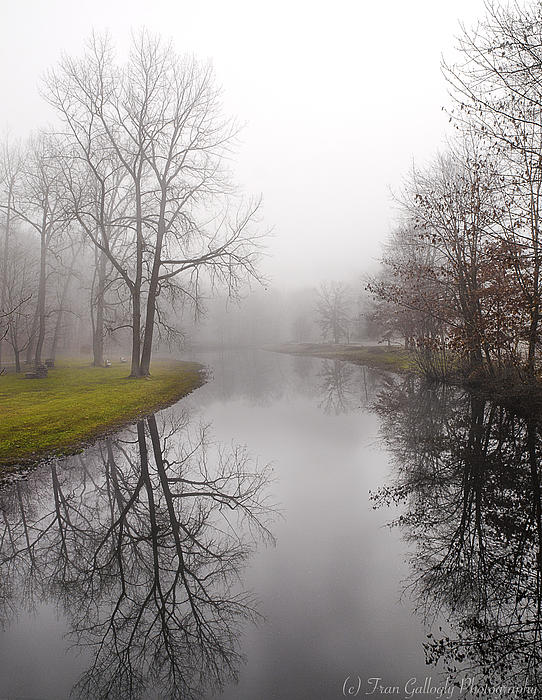 Fran Gallogly - River in the Fog