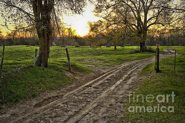 Road Less Traveled Print by Cris Hayes