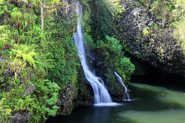 Road To Hana Waterfall Print by Pierre Leclerc Photography