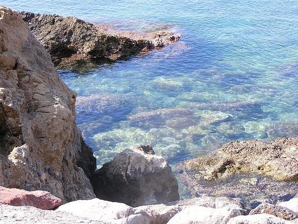 Jacqueline Essex - Rock Pool In San Julian Bay