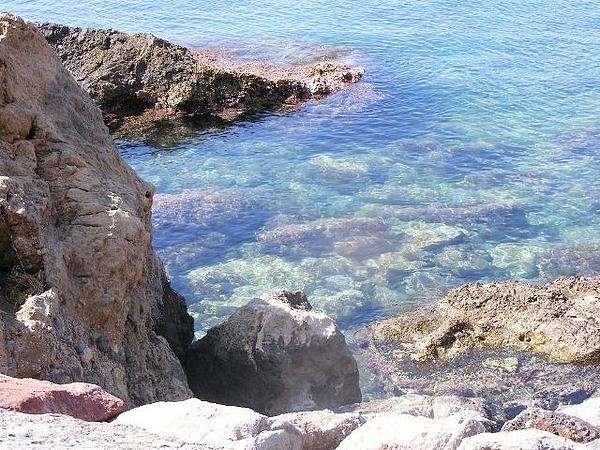 Jacqueline Essex - Rock Pool In San Julian Bay