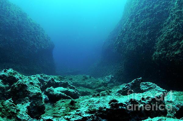 Great Ocean Floor