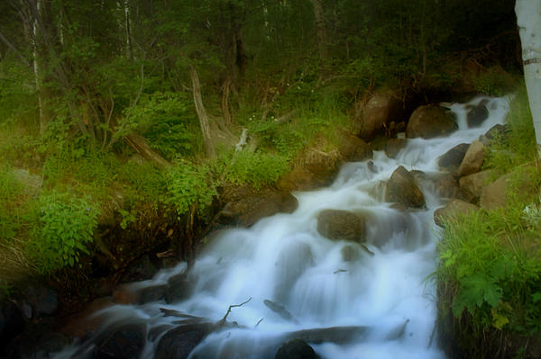 Rocky Mountain Waterfall Print by Ellen Heaverlo