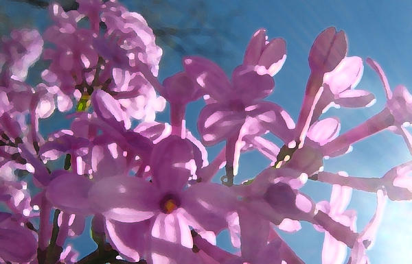 Romance Of Lilacs Print by Gretchen Wrede
