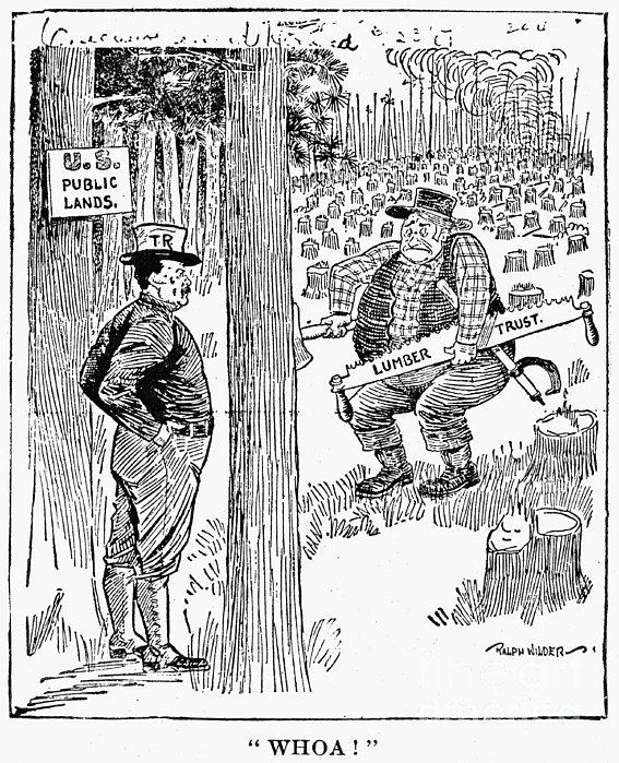 Roosevelt Cartoon, 1900s Print by Granger