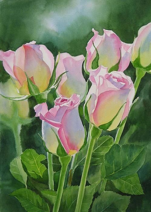 Rose Array Print by Sharon Freeman