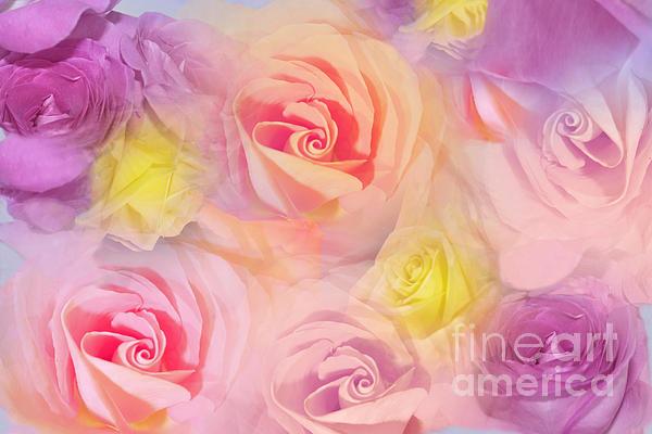 Rose Bouquet Print by Cindy Lee Longhini