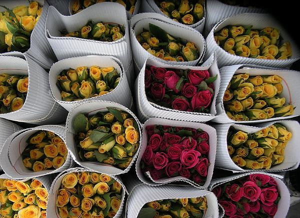 Rose Bunches Print by Mohammed Nasir