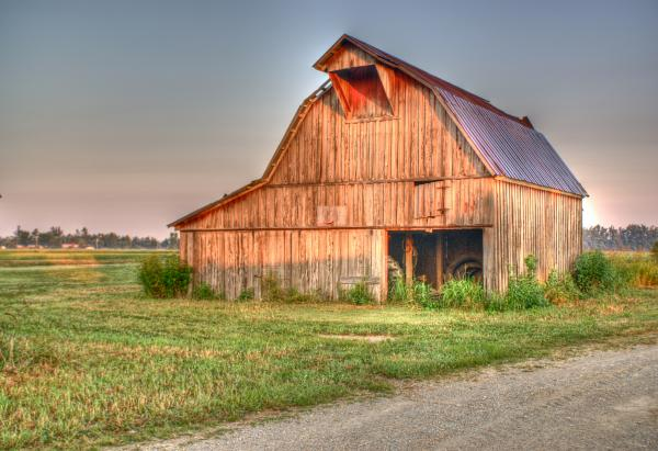 Ruddish Barn At Dawn Print by Douglas Barnett