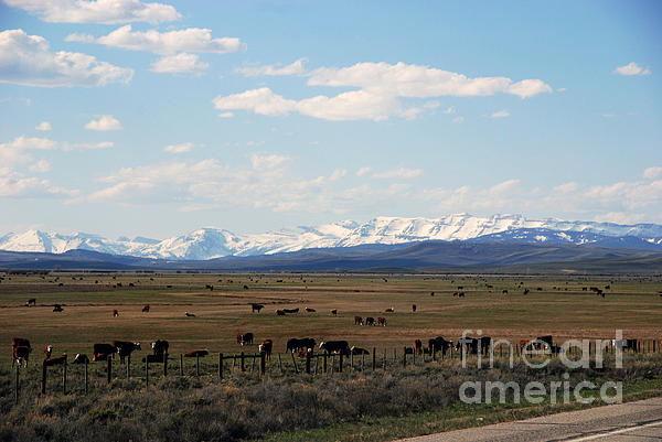 Rural Wyoming - On The Way To Jackson Hole Print by Susanne Van Hulst