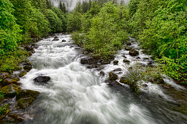 Donna Caplinger - Rushing River