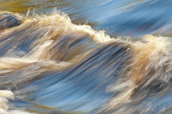 Rushing Waters Print by Carolyn Marshall