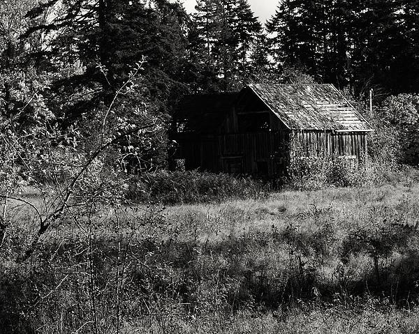 Greg Horler - Rustic barn