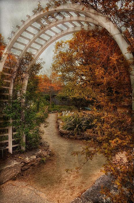 Robin-lee Vieira - Rusting Garden