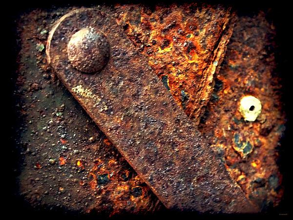 Lorainek Photographs - Rusty tool box