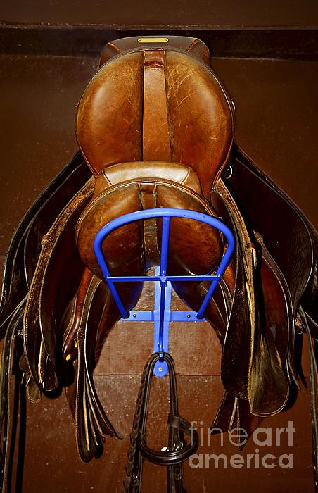 Saddles Print by Elena Elisseeva