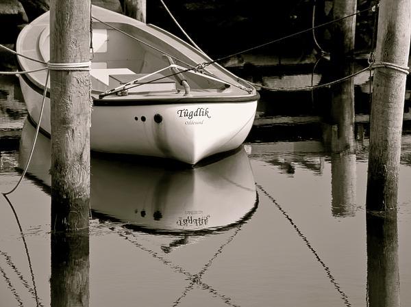 Odd Jeppesen - Safe Harbor