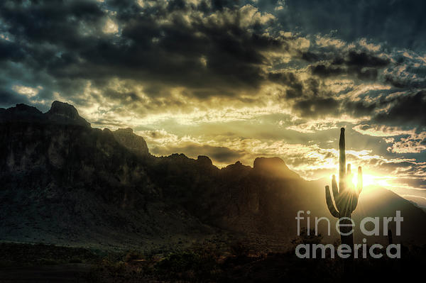 Saguaro Sunrise  Print by Saija  Lehtonen