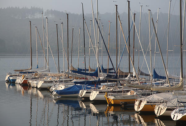 Sail Boats Photograph