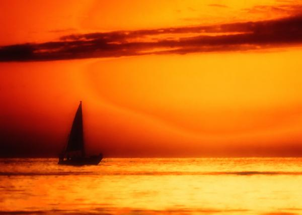Sailboat In Orange Print by Lyle  Huisken