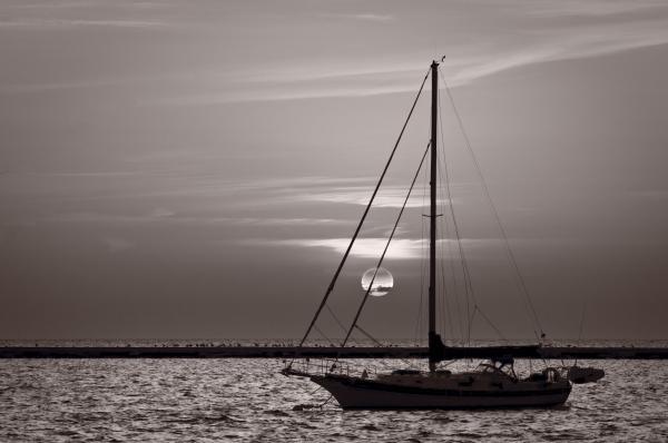 Sailboat Sunrise In B And W Print by Steve Gadomski