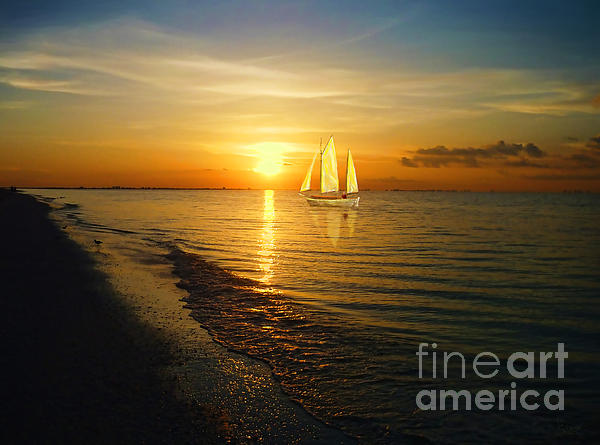 Sailing Print by Jeff Breiman