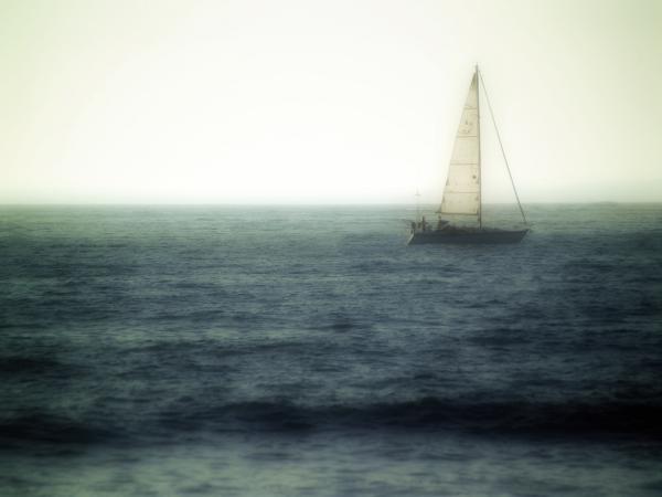 Sailing Print by Lyle  Huisken