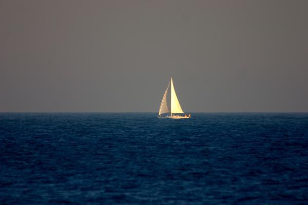 Sailing The Blue Print by Brad Scott