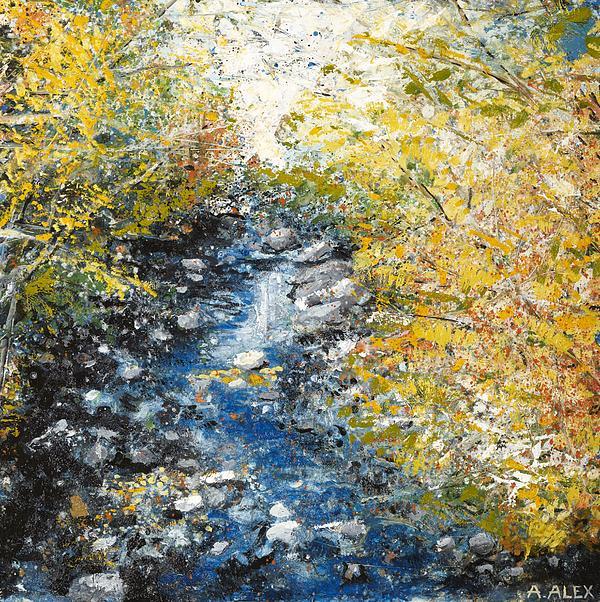 Salmon River Print by Andria Alex