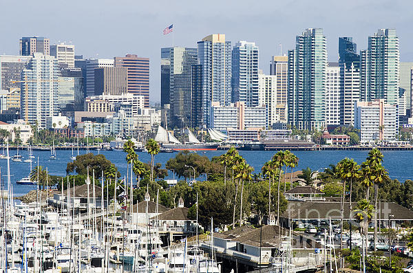 San Diego Cityscape Print by MaryJane Armstrong