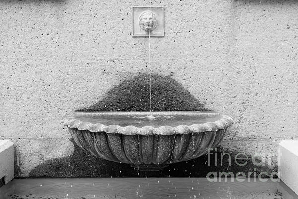 San Francisco Crocker Galleria Roof Garden Fountain - 5d17894 - Black And White Print by Wingsdomain Art and Photography