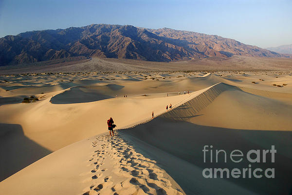 Sand Dunes Print by Tomaz Kunst