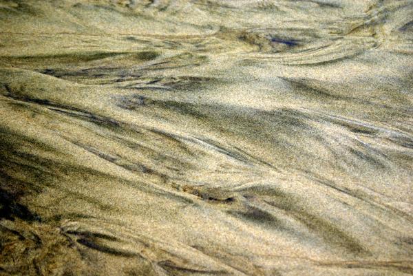 Sand Pattern Print by Marty Koch