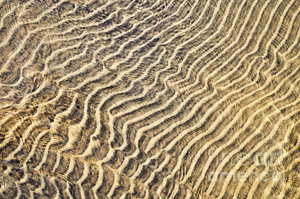 Sand Ripples In Shallow Water Print by Elena Elisseeva