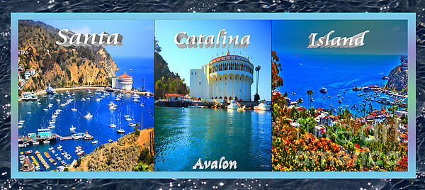 Cheryl Young - Santa Catalina Island Triptych