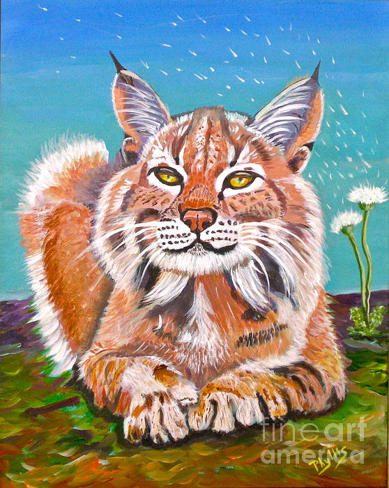 Sassy Lynx And Dandelions Print by Phyllis Kaltenbach