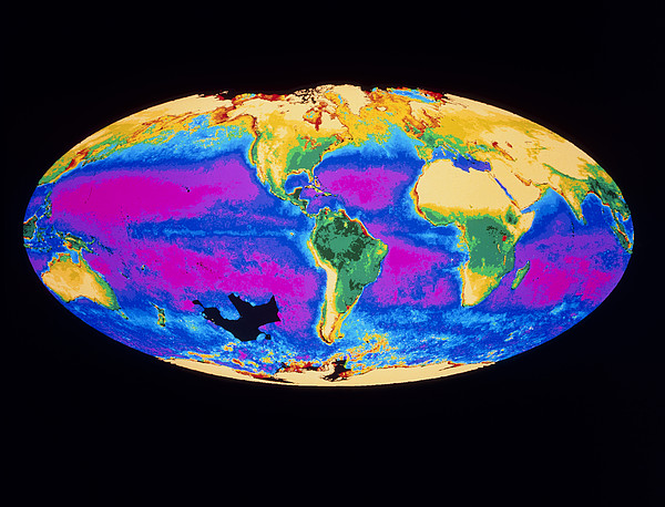 Satellite Image Of The Earth's Biosphere Print by Dr Gene Feldman, Nasa Gsfc