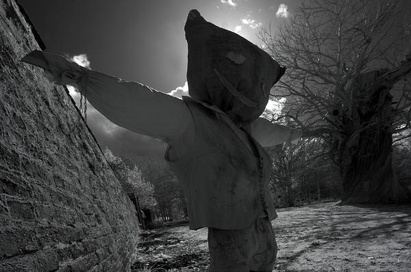 Matt Nuttall - Scarecrow