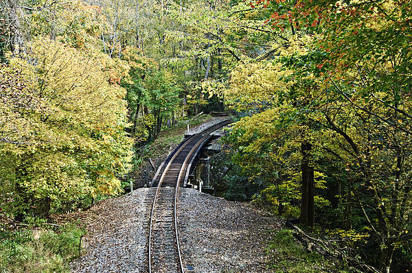 Scenic Railway Tracks Print by Susan Leggett